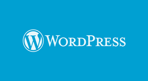 wordpress hizlandirma